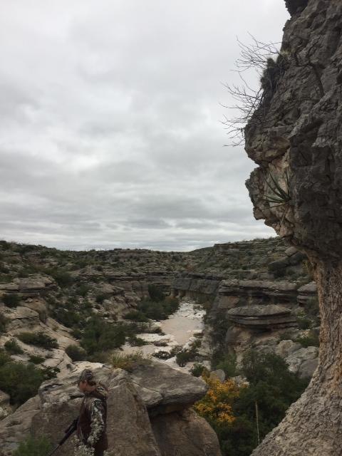 Dryden,Texas 78851,Farm/Ranch,1000