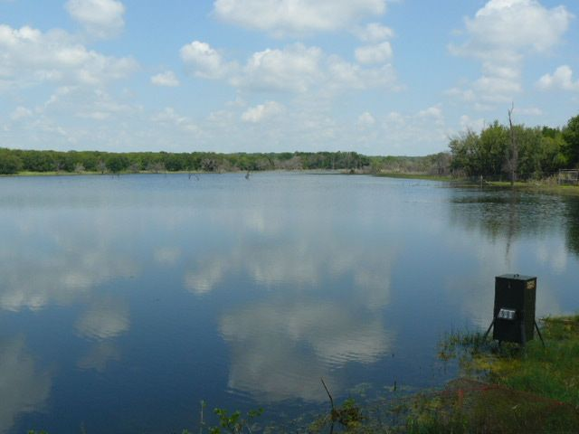 SIPE SPRINGS,Texas,Farm/Ranch,1056